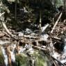 (2008-05) The Waterfall